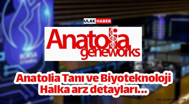 Anatolia Tanı (ANGEN) halka arz ne zaman, eşit mi oransal mı, kaç lot verir?